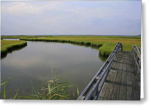 Captree Wetlands Foot Bridge Greeting Card