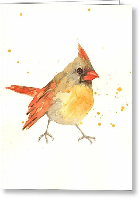 Cardinal - Female Cardinal Greeting Card by Alison Fennell