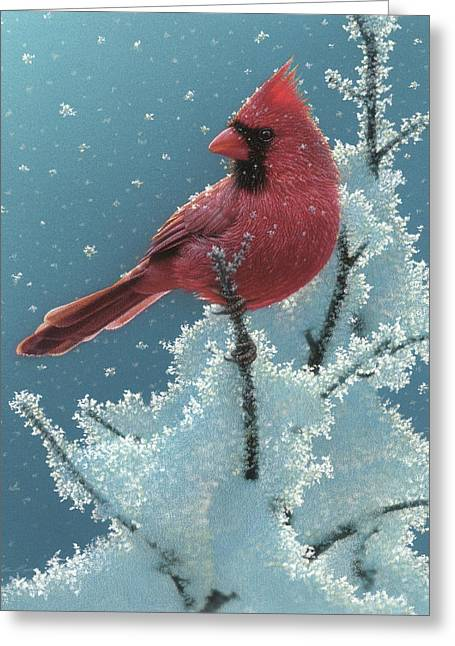 Cardinal - Cherry On Top Greeting Card
