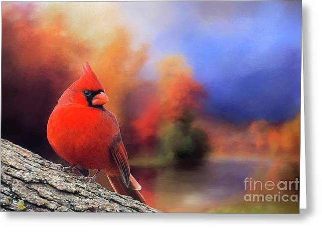 Cardinal In Autumn Greeting Card