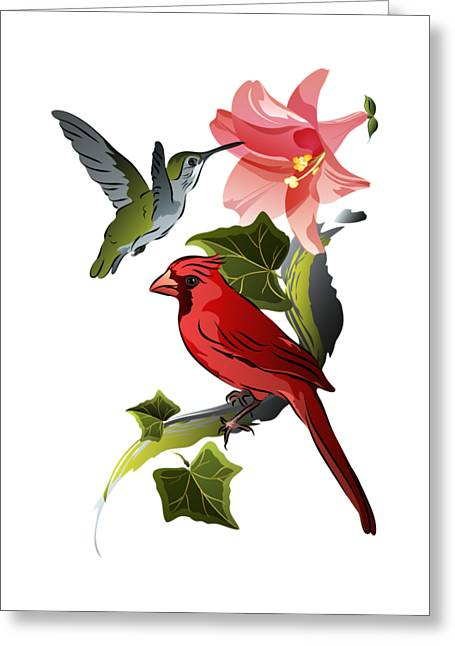 Cardinal On Ivy Branch With Hummingbird And Pink Lily Greeting Card