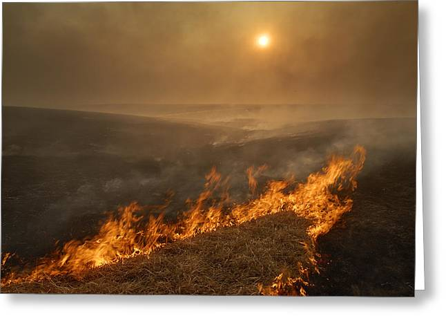 Tallgrass Prairie National Preserve Greeting Cards - Carefully Managed Fires Sweep Greeting Card by Jim Richardson