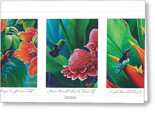 Caribbean Hummingbirds Triptych  Greeting Card by Christopher Cox