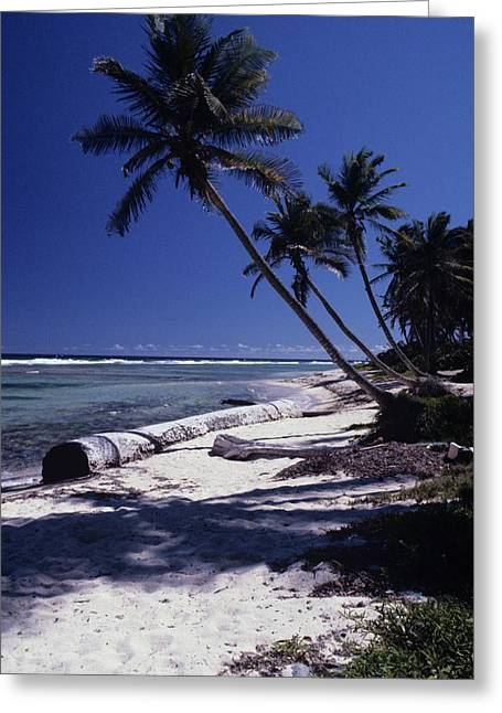 Caribbean Paradise Greeting Card