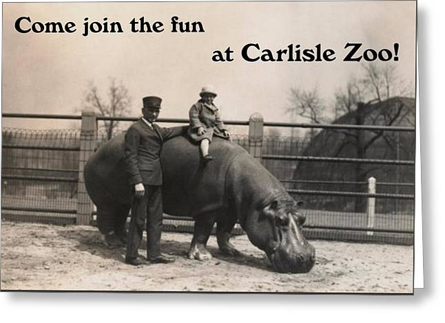 Carlisle Zoo Greeting Card