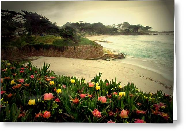 Carmel Beach And Iceplant Greeting Card by Joyce Dickens