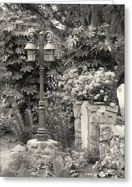 Carmel Garden Greeting Card by Gordon Beck