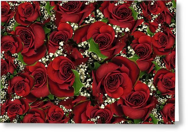 Carmine Roses Greeting Card