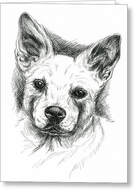 Carolina Dog Charcoal Portrait Greeting Card