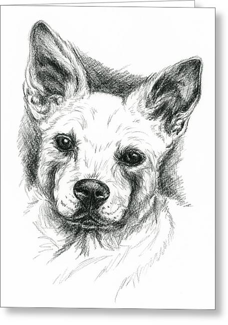 Carolina Dog Charcoal Portrait Greeting Card