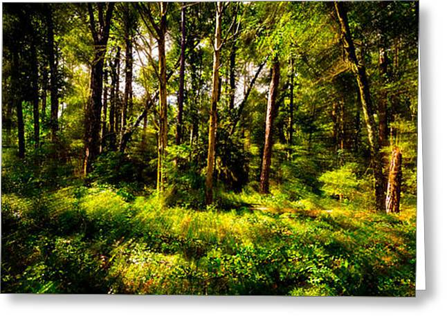 Carolina Forest Greeting Card