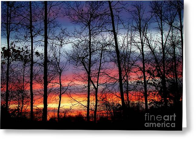 Greeting Card featuring the photograph Carolina Sunset by Sue Melvin
