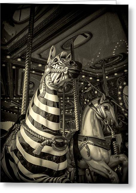 Greeting Card featuring the photograph Carousel Zebra by Caitlyn Grasso