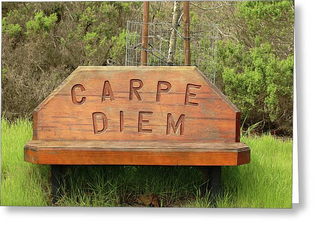 Greeting Card featuring the photograph Carpe Diem Bench by Art Block Collections