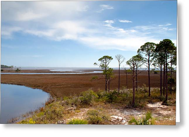 Carrabelle Salt Marshes Greeting Card by Rich Leighton
