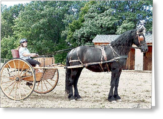 Carriage Driving Greeting Card by David Syers