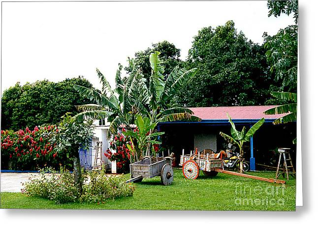 Cart Maker's Shop - Costa Rico Greeting Card by Merton Allen