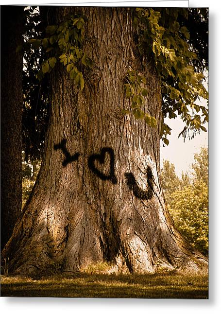 Carve I Love You In That Big White Oak Greeting Card by Trish Tritz