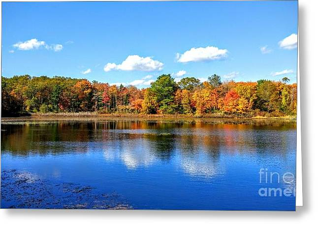 Carver Pond Bridgewater Ma Greeting Card