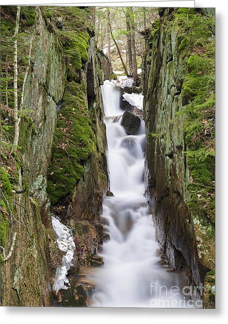 Cascade Brook - Flume Gorge Scenic Area New Hampshire Greeting Card
