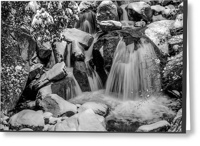 Cascade Creek In Black And White Greeting Card by Bill Gallagher