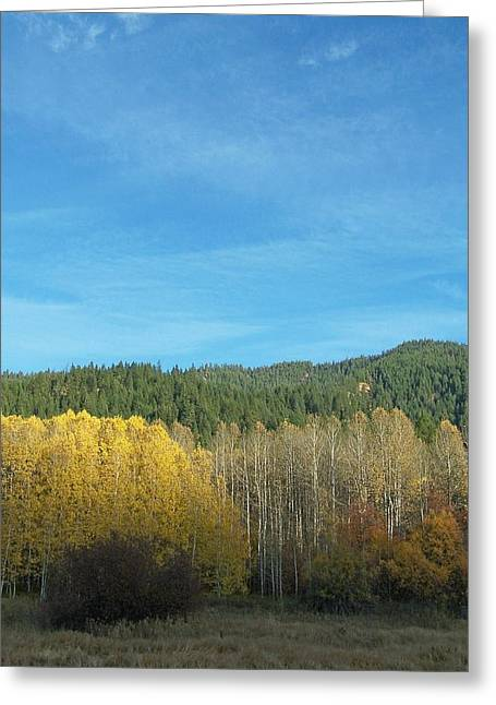 Cascade Fall Greeting Card