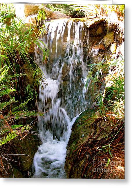 Cascade Falls Greeting Card by Debra     Vatalaro