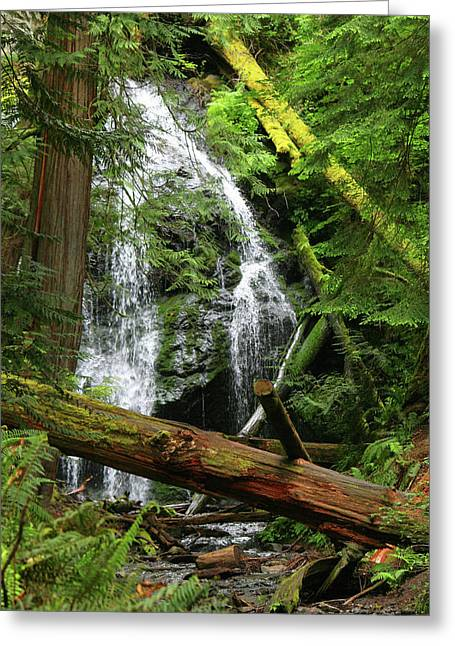 Cascade Falls - Orcas Island Greeting Card by Art Block Collections