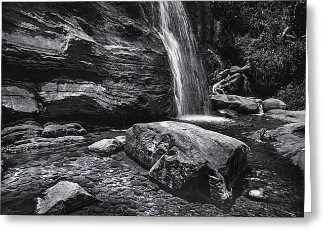 Cascade Of Bambarella Saree Ella. Monochrome  Greeting Card