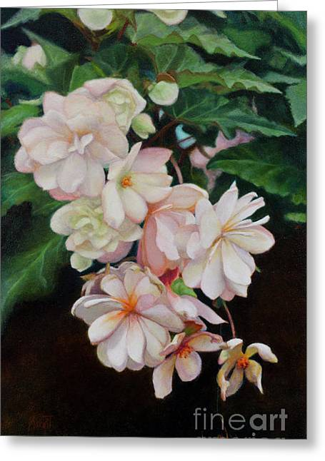 Cascade Of Begonias  Greeting Card by Margit Sampogna