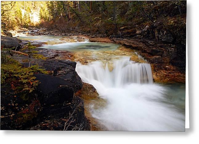 Cascade On Beauty Creek Greeting Card by Larry Ricker