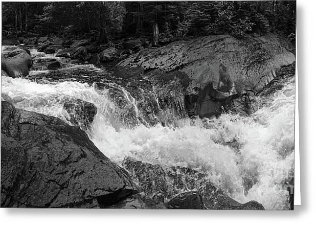 Cascade Stream Gorge, Rangeley, Maine  -70756-70771-pano-bw Greeting Card