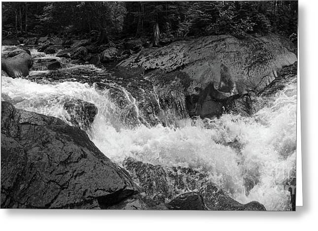Cascade Stream Gorge, Rangeley, Maine  -70756-70771-pano-bw Greeting Card