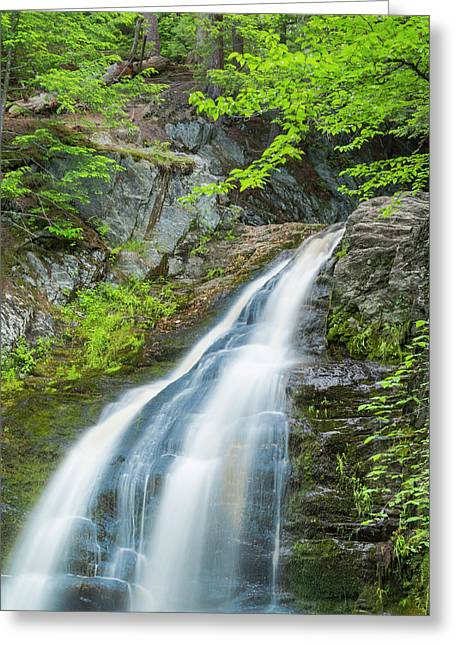 Cascade Waterfalls In South Maine Greeting Card