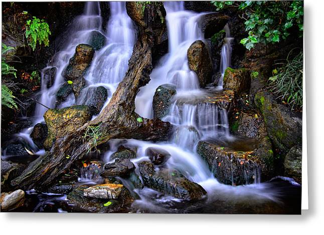 Greeting Card featuring the photograph Cascades by Harry Spitz