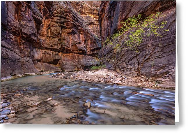 Greeting Card featuring the photograph Cascades In The Narrows Of Zion by Pierre Leclerc Photography