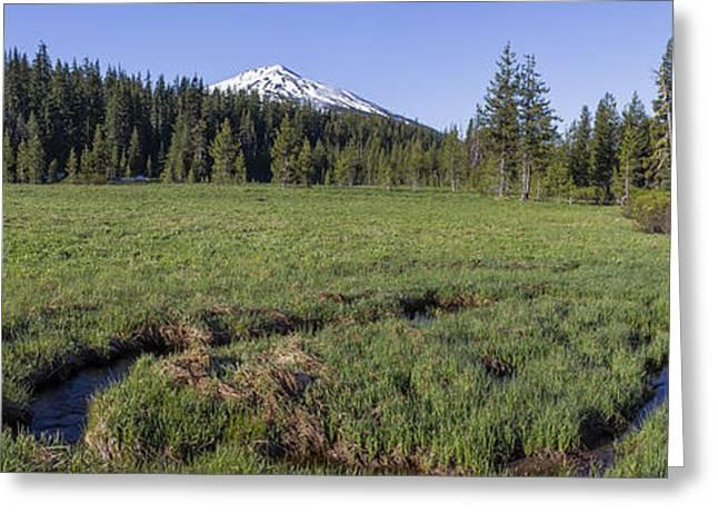 Cascades Meadow Panorama Greeting Card
