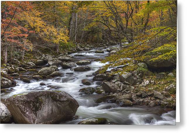 Cascades Of The Mountains Greeting Card by Jon Glaser