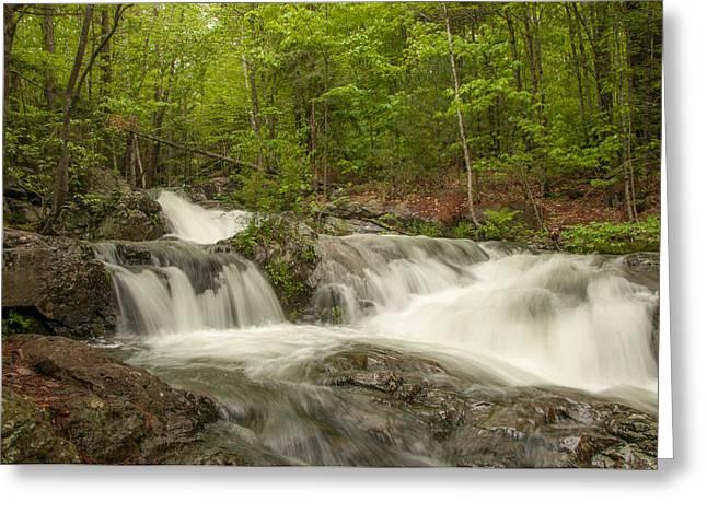 Cascades On The Brooks Falls Trail Greeting Card