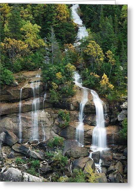 Cascading Skagway Waterfall  Greeting Card by Michael Peychich