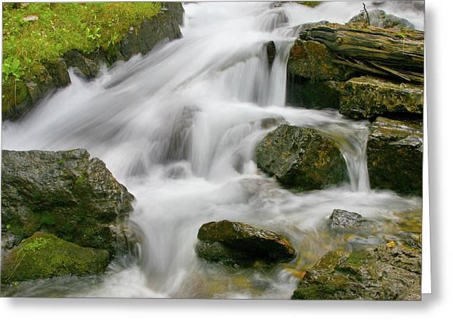 Cascading Waters Greeting Card by Crystal Garner