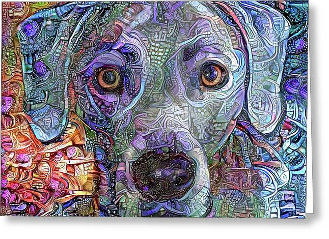 Cash The Blue Lacy Dog Closeup Greeting Card