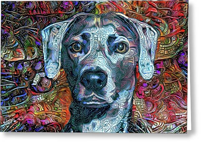 Cash The Blue Lacy Dog Greeting Card