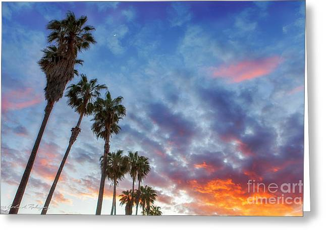 Casitas Palms Greeting Card