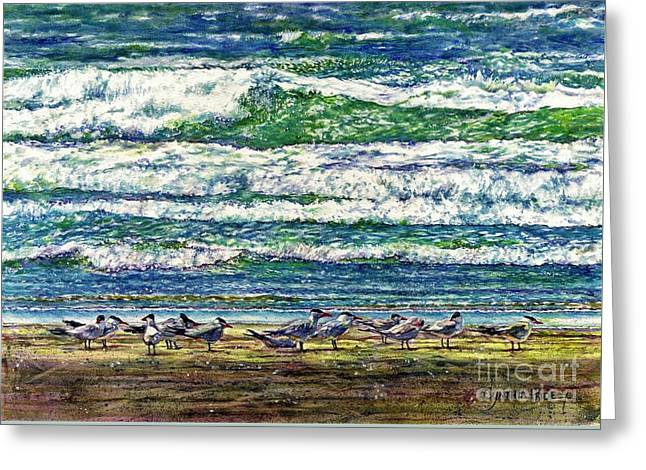 Caspian Terns By The Ocean Greeting Card