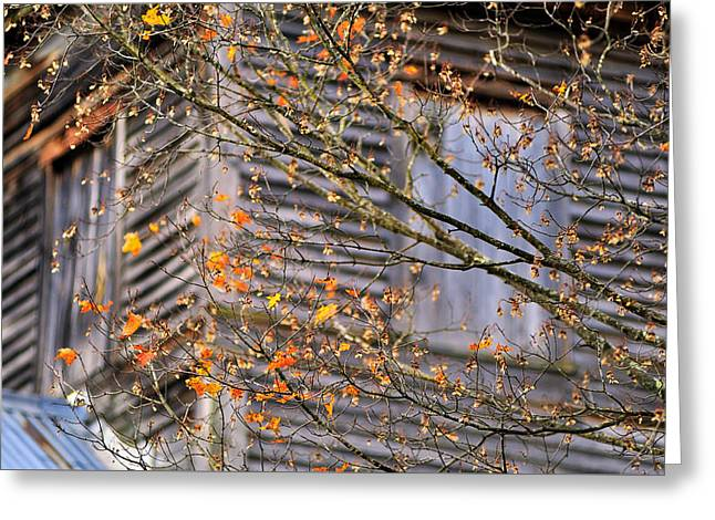 Dilapidated Greeting Cards - Cass Mill   Greeting Card by Thomas Schoeller