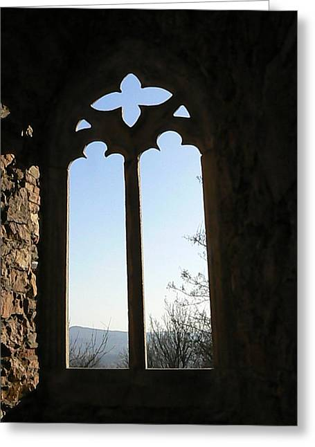 Castle  Another Window Greeting Card by Ron Hayes