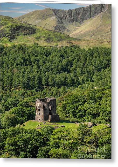 Castle Dolbadarn  Greeting Card by Adrian Evans