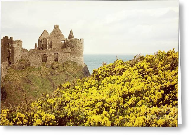 Castle Ruins And Yellow Wildflowers Along The Irish Coast Greeting Card by Juli Scalzi