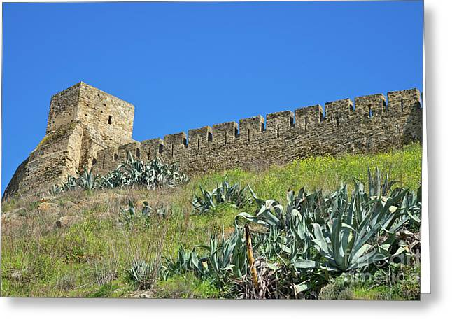 Castle Wall In Mertola Greeting Card by Angelo DeVal
